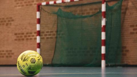 Futsal (Adultes/Ados +16ans)